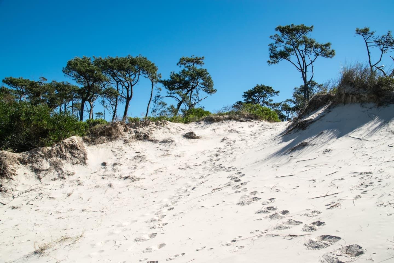 Dune în departamentul Canelones